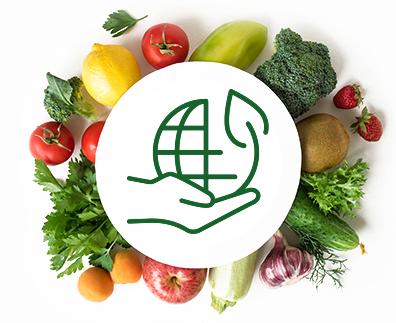 Choosing Organic Food Suppliers